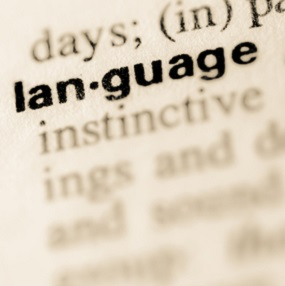 IGCSE English Language, Dictionary image of the word langauge