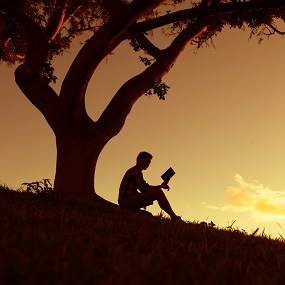 student sat reading a book outside beside a tree